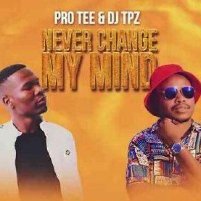 Pro-Tee & DJ TPZ Never Change MP3 Download