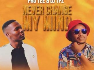 Pro-Tee Never Change Mp3 Download
