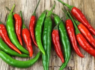 Aprilsnar: Salsino og Chili Klaus lander millioninvestering fra Tabasco-gigant