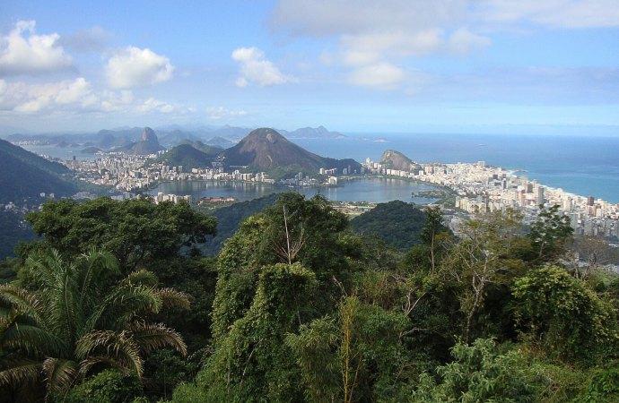 Frikadeller og bananer: Innovationssamarbejde mellem Danmark og Brasilien