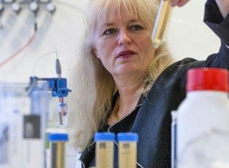 Scion DTU får virksomheder i vækst gennem forskning