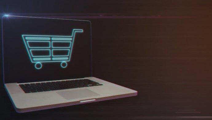 Netbutikker har succes med nicherne