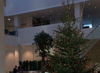 Startup: Brug julen produktivt
