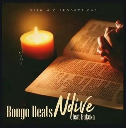 Bongo Beats Ft. Bukeka – Ndive