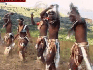 VIDEO: Opresident - Baphuzela kimimp4 download