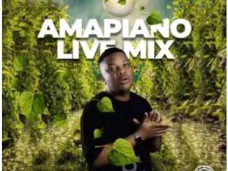 Snow Deep Amapiano Live Mix Mp3 Download