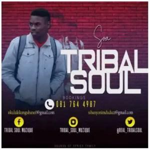 Tribal Soul – SOA Exclusive Selections Vol. 1 Download Mp3