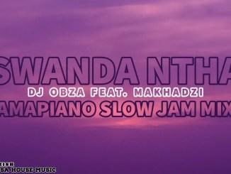 Swanda Ntha (Amapiano Slow Jam Mix) - DJ Obza ft. Makhadzi