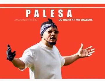 Du Richy – Palesa Ft. Mr Jozzers Download Mp3