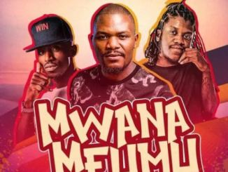 TIM Ft. Chef 187 – Mwana Mfumu