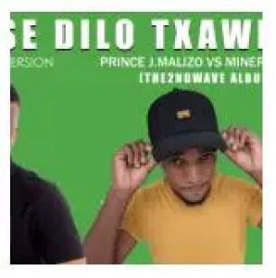 Prince J. Malizo & MinerBeats – Ase Dilo Txawe