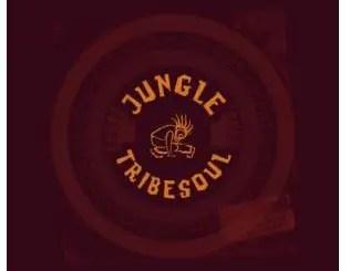 TribeSoul – Jungle (Dub Feel)