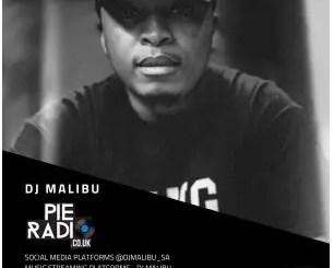 DJ Malibu – Pie Radio Mix 2