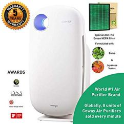 Coway air purifier review: it comes with Green Anti-flu True HEPA filter under 15000