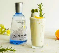 Gin Mare Med Transfers