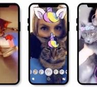 Snapchat Gatos