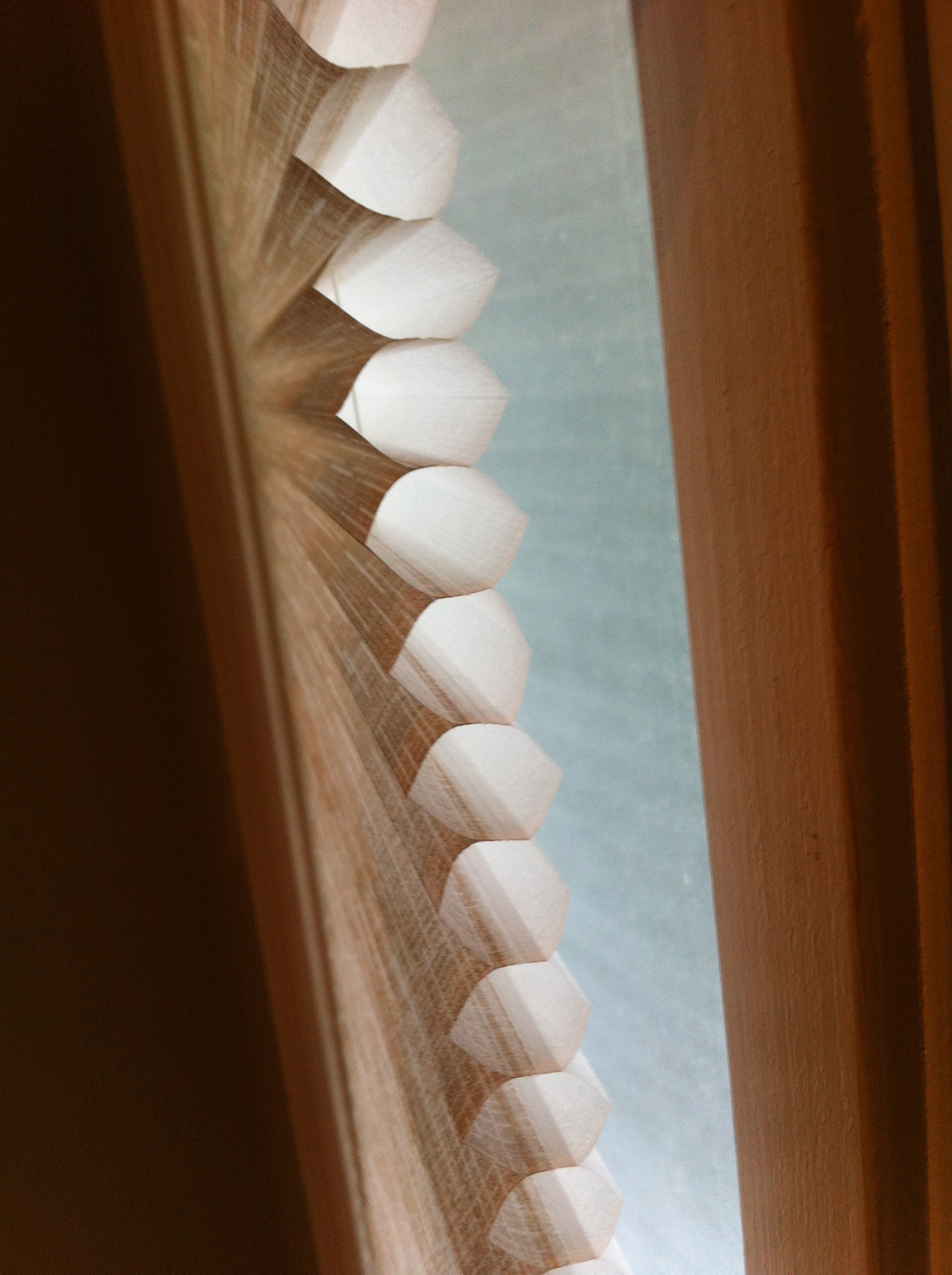 Pleated Shades For Sidelight Windows Trendy Blinds