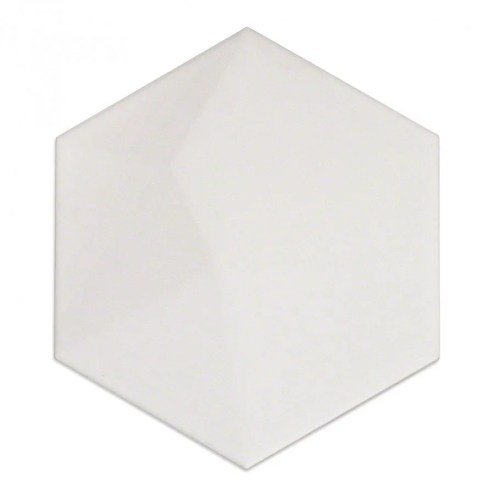 TS1007509 CERAMIC TILE
