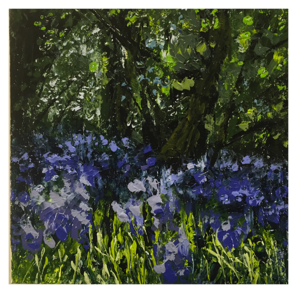 Bluebells, Colin Halliday