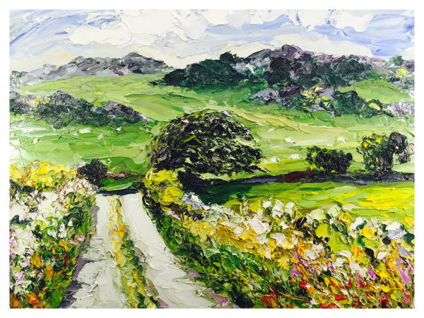 Near Soar Anglesey Alan Knight