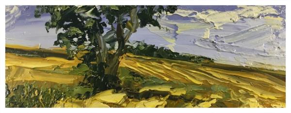 Halliday, Colin (1964 – ) Cornfields - Trent Art