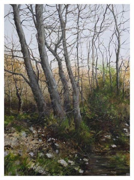 Brammeld, David RBA PS RBSA Pastelliste de France ( ) On The Hill - Trent Art