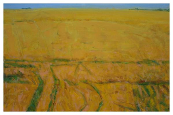 Tidnam, Nick PRBA NEAC (1941 - ) Big Field - Trent Art