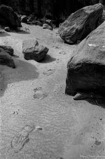 footprints in Arches National Park. p