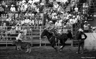 Calf-roping at the Spanish Fork Fiest Days rodeo.