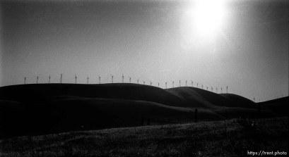 Altamont windmills.