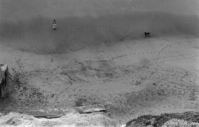 Man and dog on beach at Fort Funston.