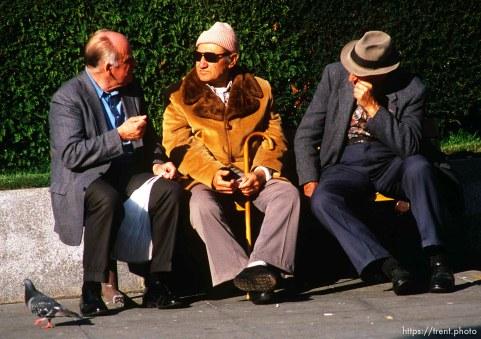 Old men in Union Square, november 1987.