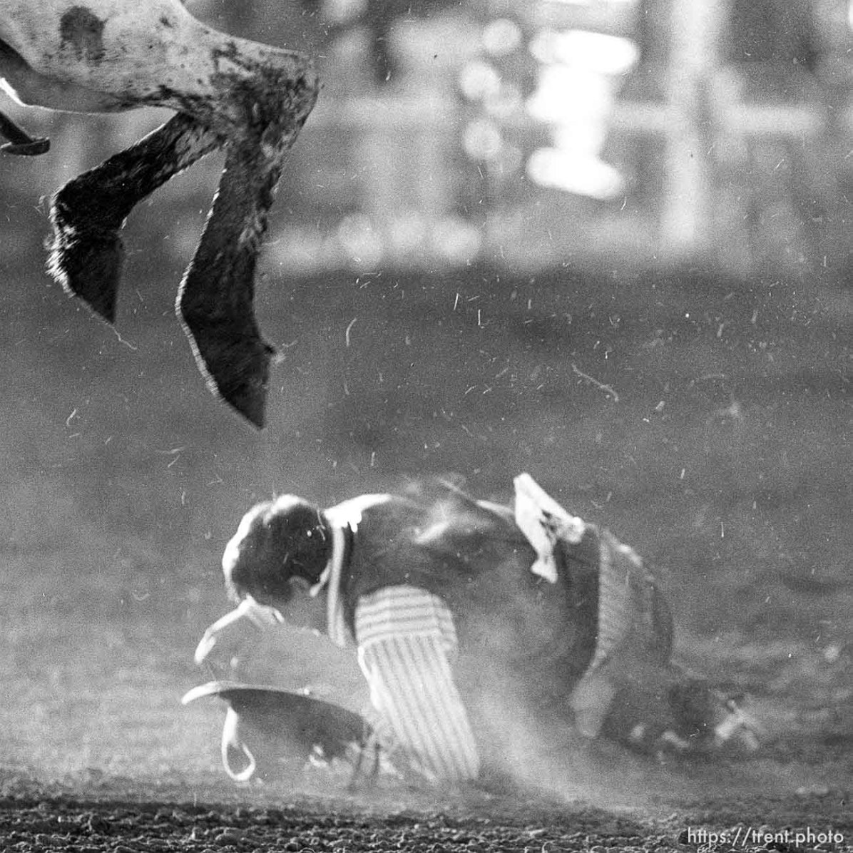 Guy who fell off horse in rodeo.