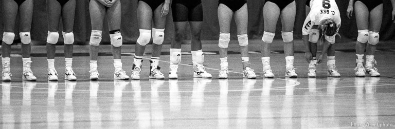 Volleyball Lineup