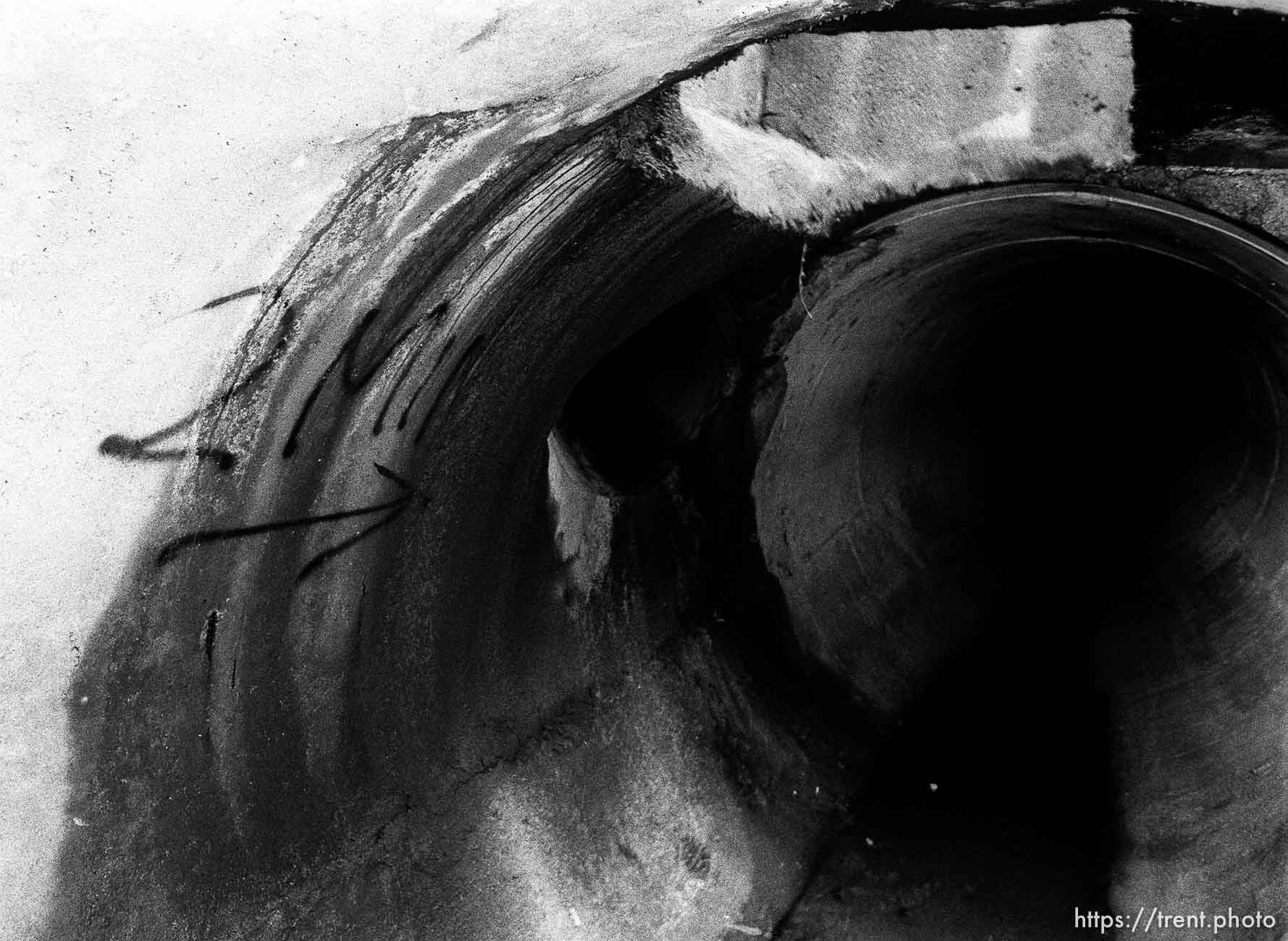 in sewer pipe.
