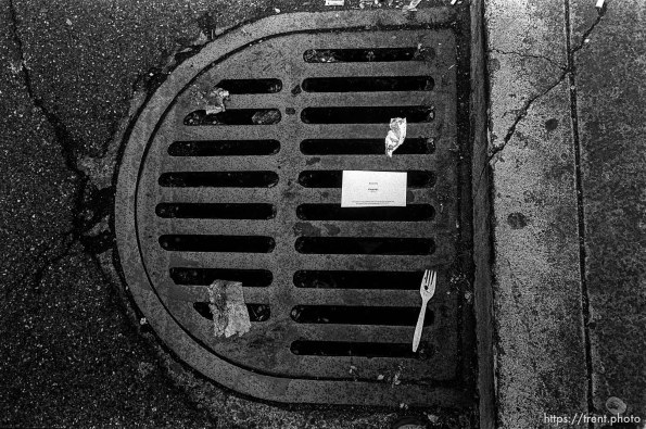 Sewer grate with fork