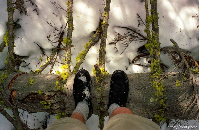 Trent feet, tree, snow on solo hike to Sword Lake