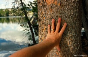 """Trent hand on the """"loving tree"""" on solo hike to Sword Lake"""
