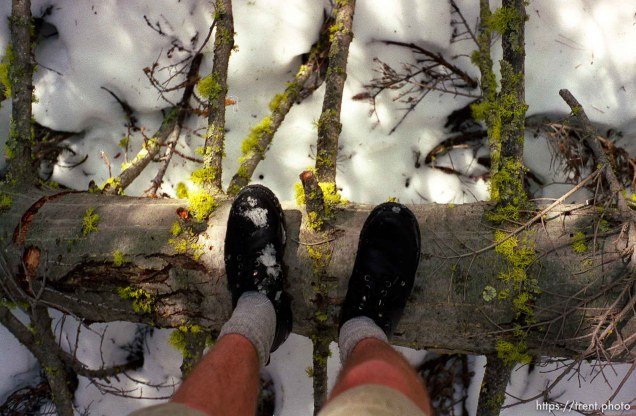 Trent feet and tree and snow on solo hike to Sword Lake