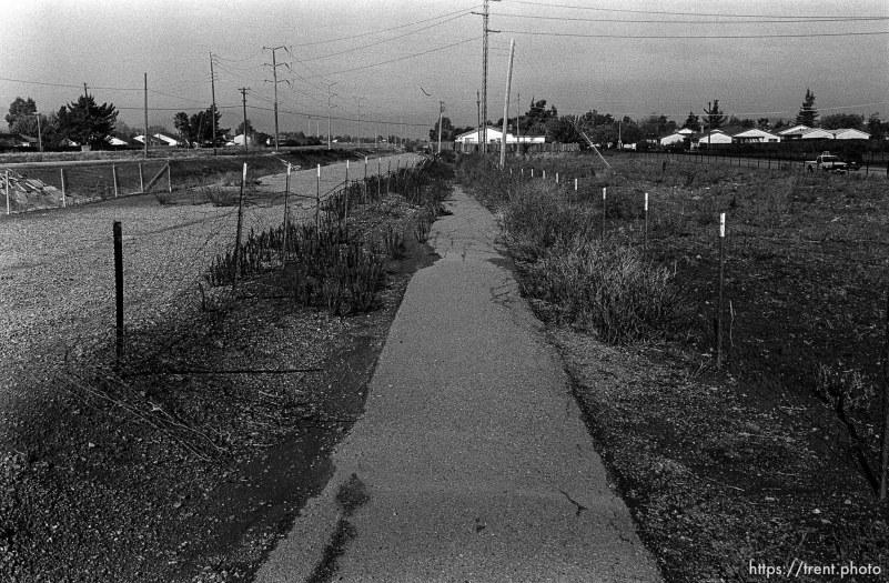 Walking path. San Ramon project