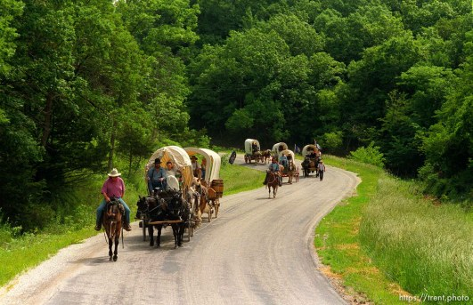 Wagons on the road at Mormon Wagon Trail re-enactment