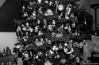 Phyllis Nelson's Christmas Tree and santa ornaments on Christmas Eve.