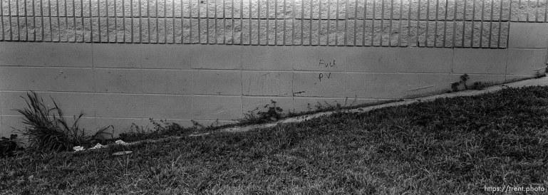 """fuck P.V."" graffiti on wall at Pine Valley Intermediate"