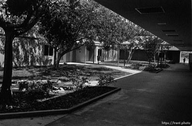 halls at Sunset Hills Elementary