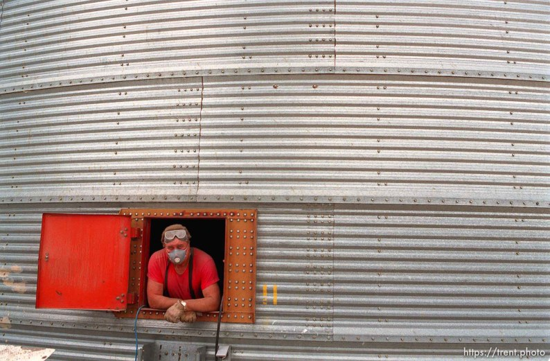 Dick Wagoner, manager of Jack's Bean Company, looks out from inside a grain elevator.