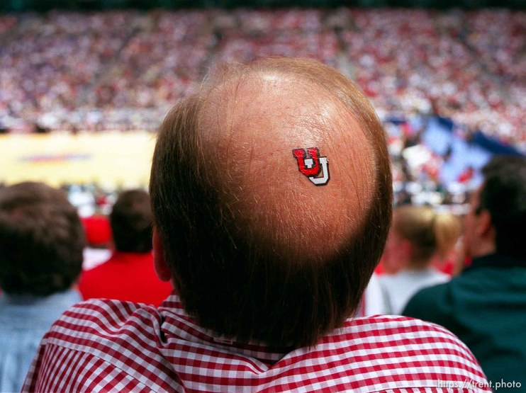 "Utah fan Dave Nelson with ""U"" on his bald spot at the Final Four."