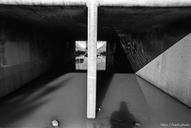Trent shadow and concrete tunnels in San Ramon Creek.