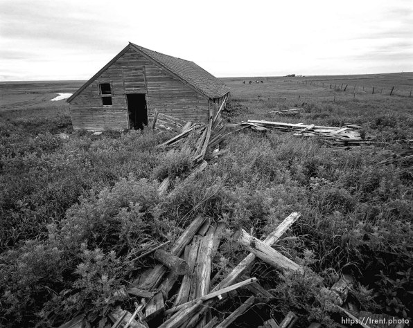 Trash and barn at Aunt Bea's farm.