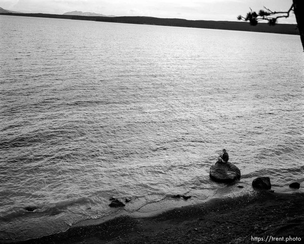 Woman reading on shore of Yellowstone Lake