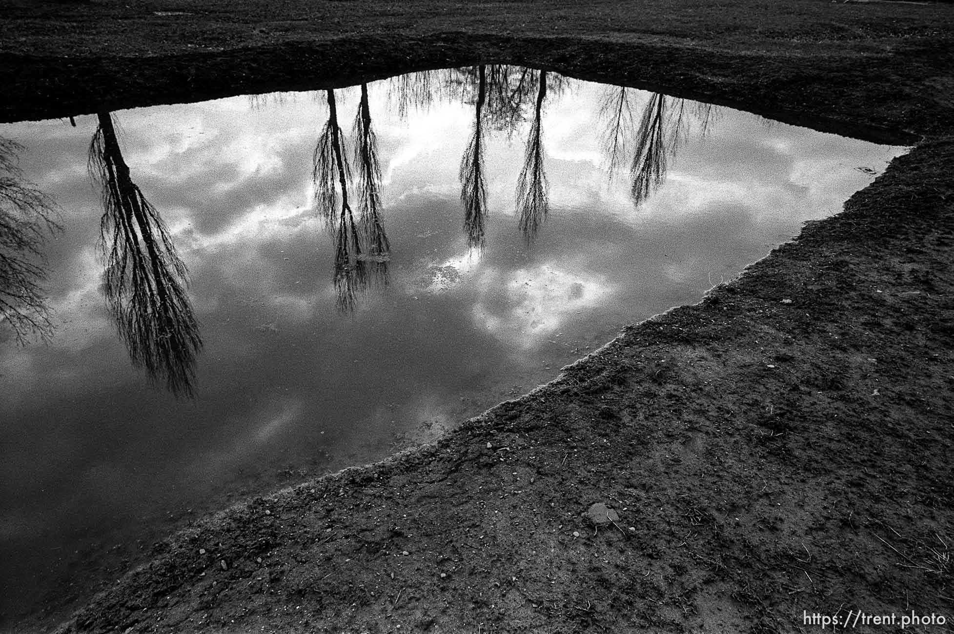 Pool filled with ashes of the dead at the Birkenau Concentration Camp.